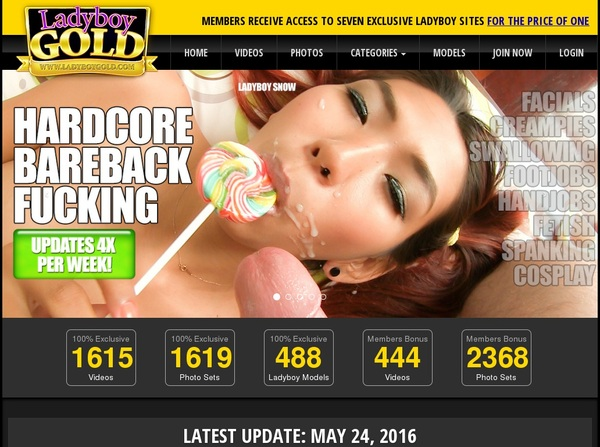 Free Account For Ladyboy Gold