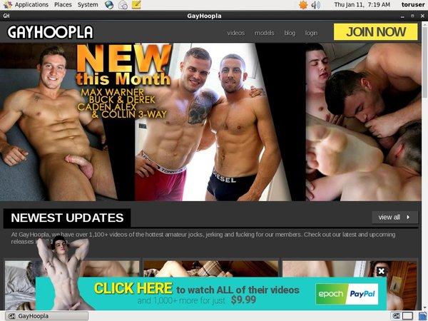 [Image: Gay-Hoopla-Site.jpg]