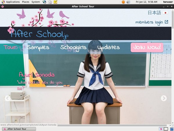 Afterschool.jp Com Discount Trial